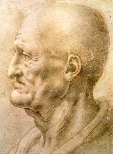 davinci-old-man-study