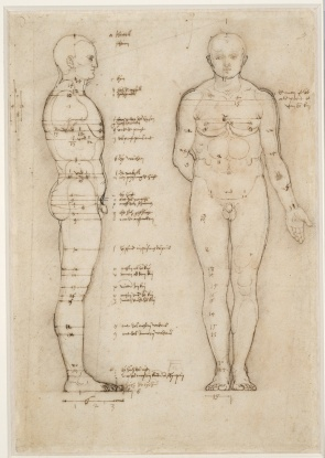 durer_male-nude-proportions